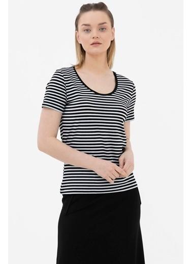 Sementa Geniş Yaka Basic Çizgili Tshirt - Siyah Siyah